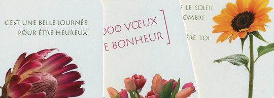 Flor-nouveau